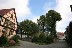 ih090813 Lindengruppe Eigenrieden (3)