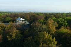 Nationalpark Hainich Baumkronenpfad (1)